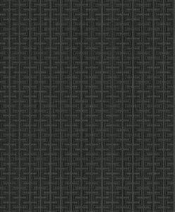 ZN51800
